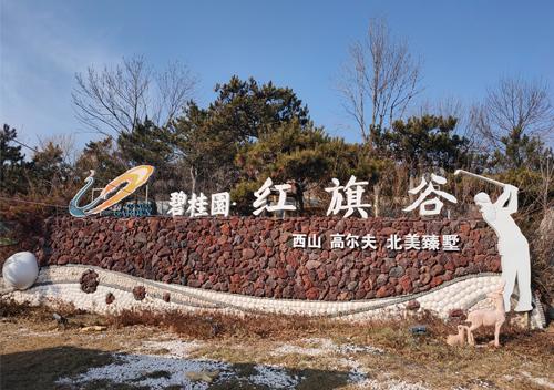 碧桂园别墅
